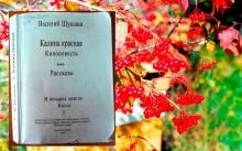 Книга Калина красная