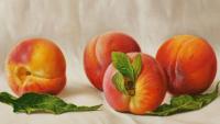 Старинные рецепты фруктовых десертов